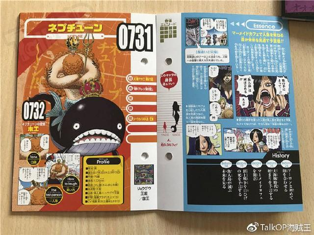 One Piece: Hé lộ thông tin về Người đàn ông nguy hiểm nhất thế giới Monkey D. Dragon, ông bố trong truyền thuyết của Luffy - Ảnh 24.