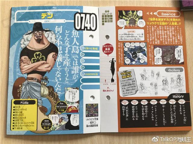 One Piece: Hé lộ thông tin về Người đàn ông nguy hiểm nhất thế giới Monkey D. Dragon, ông bố trong truyền thuyết của Luffy - Ảnh 27.