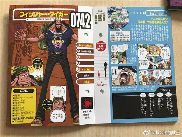 One Piece: Hé lộ thông tin về Người đàn ông nguy hiểm nhất thế giới Monkey D. Dragon, ông bố trong truyền thuyết của Luffy - Ảnh 28.