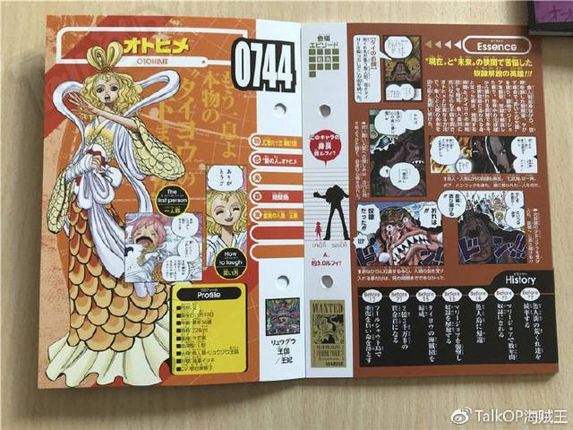 One Piece: Hé lộ thông tin về Người đàn ông nguy hiểm nhất thế giới Monkey D. Dragon, ông bố trong truyền thuyết của Luffy - Ảnh 29.