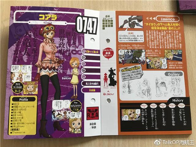 One Piece: Hé lộ thông tin về Người đàn ông nguy hiểm nhất thế giới Monkey D. Dragon, ông bố trong truyền thuyết của Luffy - Ảnh 31.