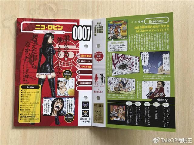 One Piece: Hé lộ thông tin về Người đàn ông nguy hiểm nhất thế giới Monkey D. Dragon, ông bố trong truyền thuyết của Luffy - Ảnh 4.