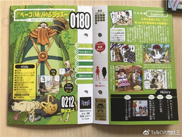 One Piece: Hé lộ thông tin về Người đàn ông nguy hiểm nhất thế giới Monkey D. Dragon, ông bố trong truyền thuyết của Luffy - Ảnh 10.