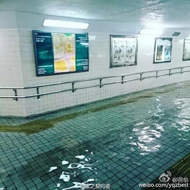 Cộng đồng mạng sửng sốt vì hình ảnh Nhật Bản ngập trong nước lũ vẫn sạch bong, không một cọng rác - Ảnh 6.