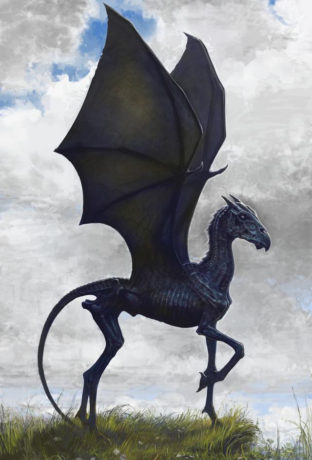 Bạn biết gì về Vong Mã - loài sinh vật huyền bí có vẻ ngoài chết chóc trong Harry Potter? - Ảnh 1.