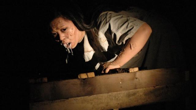 Song trùng Aswang: Con quỷ chuyên ăn thai nhi và giả mạo hình dạng - Ảnh 3.