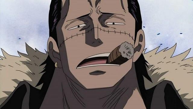 One Piece: Gây ra đảo chính và những tội lỗi mà các Thất vũ hải đã gây ra - Ảnh 1.