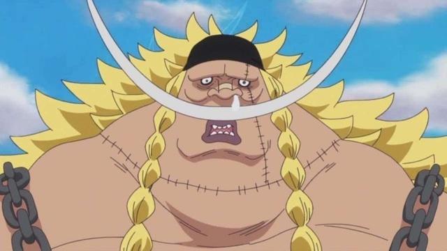 One Piece: Gây ra đảo chính và những tội lỗi mà các Thất vũ hải đã gây ra - Ảnh 5.