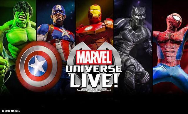 Tại sao vũ trụ điện ảnh Marvel hấp dẫn chúng ta đến thế? - Ảnh 1.