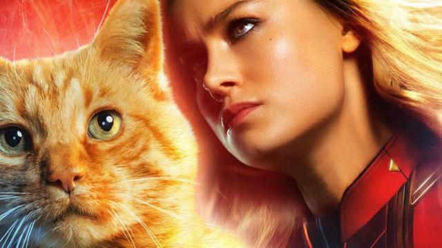 Boss mèo Goose chính là chìa khóa bí mật giải cứu vũ trụ khỏi ác nhân Thanos? - Ảnh 1.