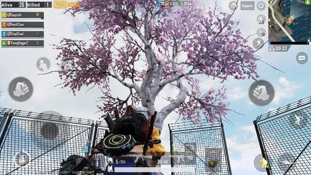 Game thủ PUBG Mobile có thể nhận đồ 3, súng thính khi tưới cây hoa anh đào ở bản 0.12 - Ảnh 4.
