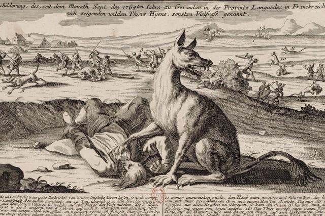 Quái thú vùng Gévaudan: Bí ẩn thảm sát đẫm máu nhất trong lịch sử loài người - Ảnh 2.