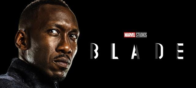 Blade, gã sát thủ săn ma cà rồng trong Phase 4 Marvel tới đây sở hữu sức mạnh nguy hiểm như thế nào? - Ảnh 2.
