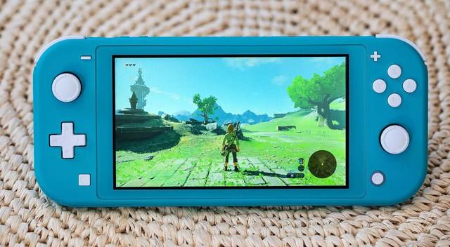 Trên tay Nintendo Switch Lite, hệ máy chơi game cầm tay giá rẻ dành cho học sinh sinh viên - Ảnh 1.