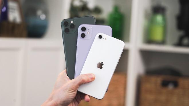 iPhone 12 sẽ nối tiếp chiến lược hạng hai từng được Tim Cook áp dụng cho Apple Watch SE, iPad Air và iPhone XR/11 - Ảnh 2.