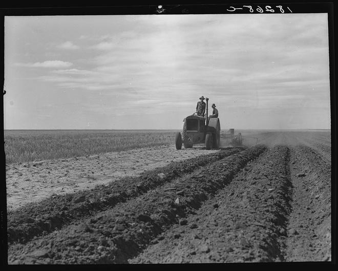 Sự kiện Dust Bowl: Cơn bão đen kéo dài 10 năm trên khắp Bắc Mỹ - Ảnh 4.