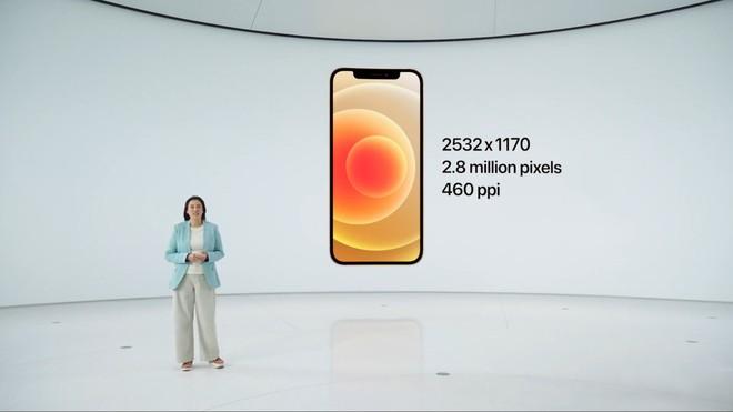 iPhone 12 và iPhone 12 mini ra mắt: Mạnh hơn 40%, camera và màn hình nâng cấp xịn xò, hỗ trợ 5G và giá hạt dẻ - Ảnh 3.