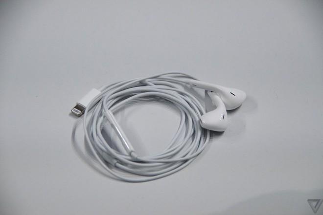 Apple giảm mạnh giá bán tai nghe EarPods và củ sạc iPhone, sau khi ngừng bán kèm trong hộp của iPhone 12 - Ảnh 1.
