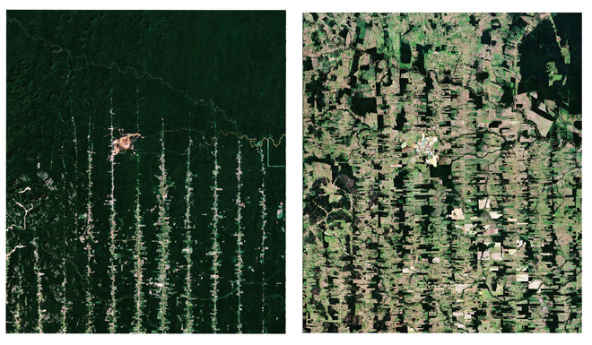 Bộ sưu tập ảnh vệ tinh từ năm 1984 cho thấy con người đã thay đổi Trái Đất như thế nào? - Ảnh 6.