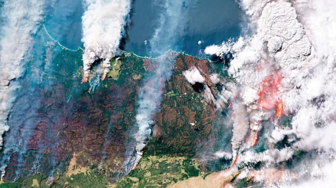 Bộ sưu tập ảnh vệ tinh từ năm 1984 cho thấy con người đã thay đổi Trái Đất như thế nào? - Ảnh 7.