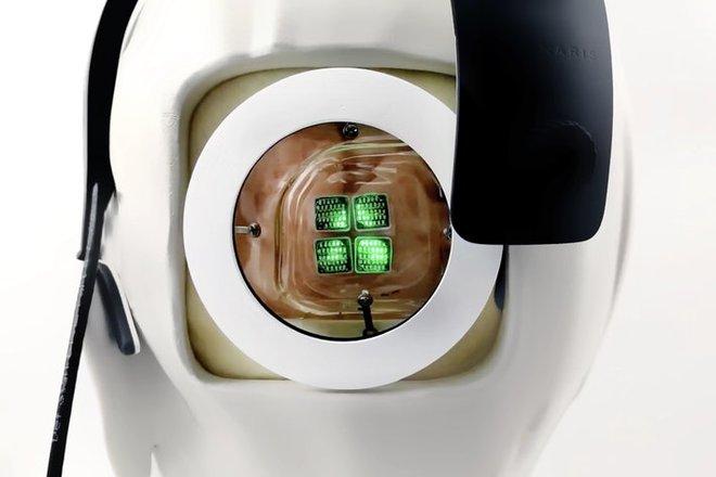 Hệ thống thị giác nhân tạo với chip gắn thẳng vào não này sẽ giúp người khiếm thị nhìn lại được, chuẩn bị được thử trên người - Ảnh 2.