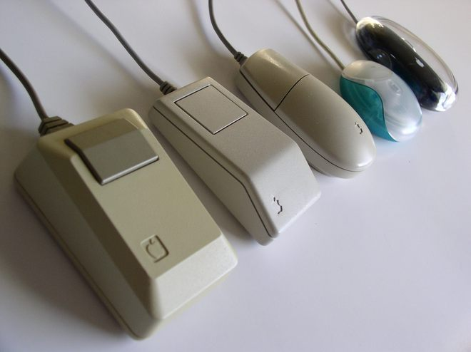 Vì sao chuột máy tính lại được gọi là...chuột, thay vì tên của một loài động vật khác? - Ảnh 2.