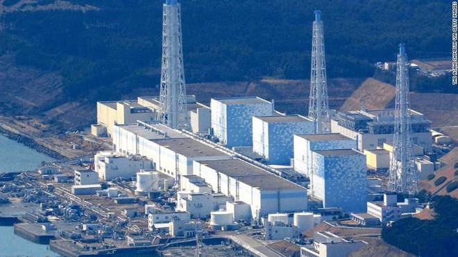 Tổ chức Hòa Bình Xanh: Kế hoạch đổ nước nhiễm phóng xạ vào đại dương của Nhật Bản có thể thay đổi DNA của loài người - Ảnh 1.