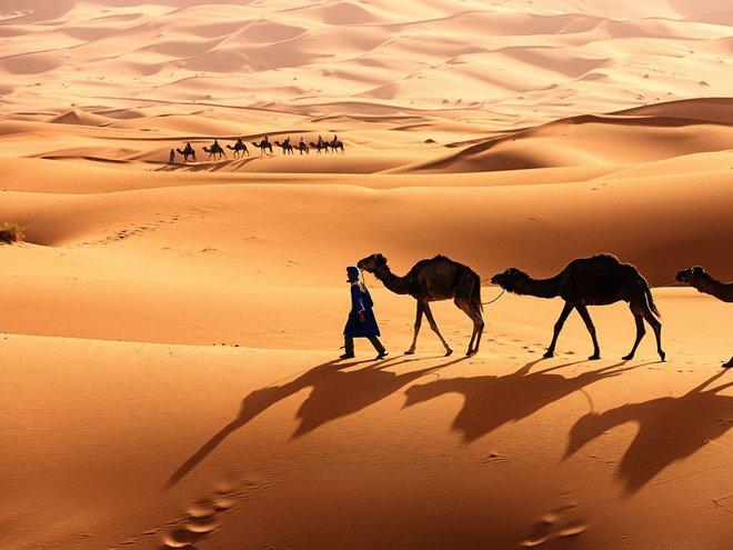 Ta có thể biến sa mạc Sahara thành nhà máy năng lượng mặt trời lớn nhất thế giới không? - Ảnh 1.