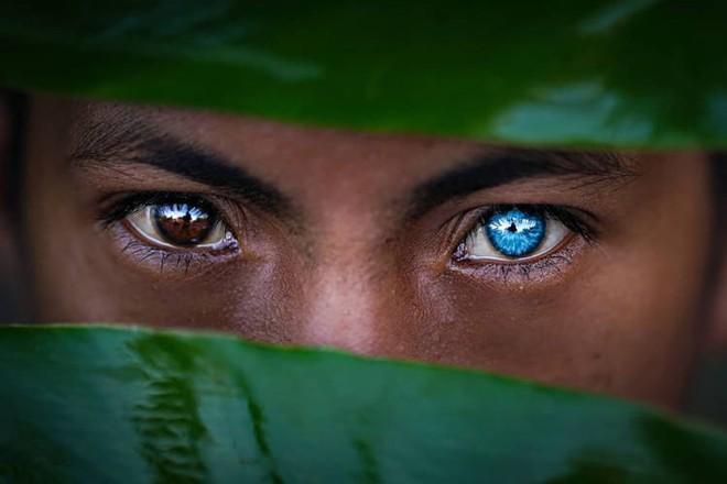 Hội chứng di truyền kỳ lạ khiến cho các thành viên trong bộ tộc bản địa Indonesia sở hữu màu mắt xanh hiếm thấy - Ảnh 1.