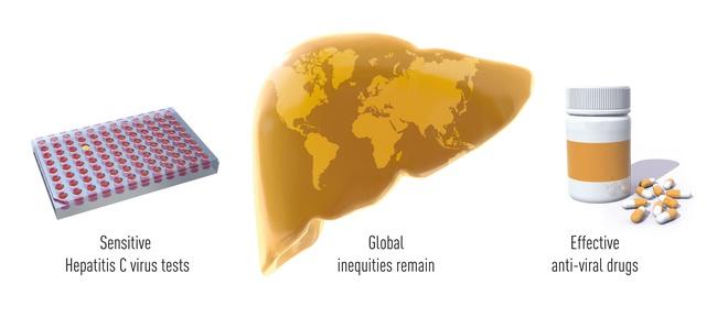 Giải Nobel Y học 2020 vừa được trao cho khám phá về virus viêm gan C đã cứu sống hàng triệu người - Ảnh 4.