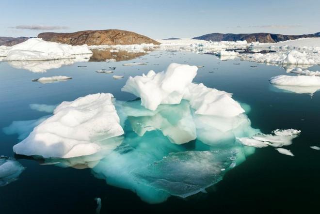 Đại dương đang giống như một chiếc bánh nhiều lớp và điều này quả thực nguy hiểm với toàn bộ hệ sinh thái - Ảnh 1.