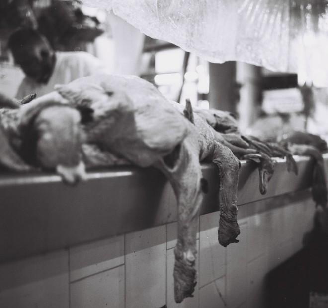 Cách chụp ảnh như nữ nhiếp ảnh gia đường phố Vivian Maier - Ảnh 12.