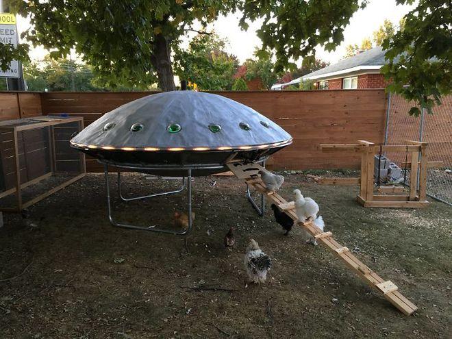 Hóa ra xây chuồng gà cũng có thể sáng tạo được tới mức này - Ảnh 4.