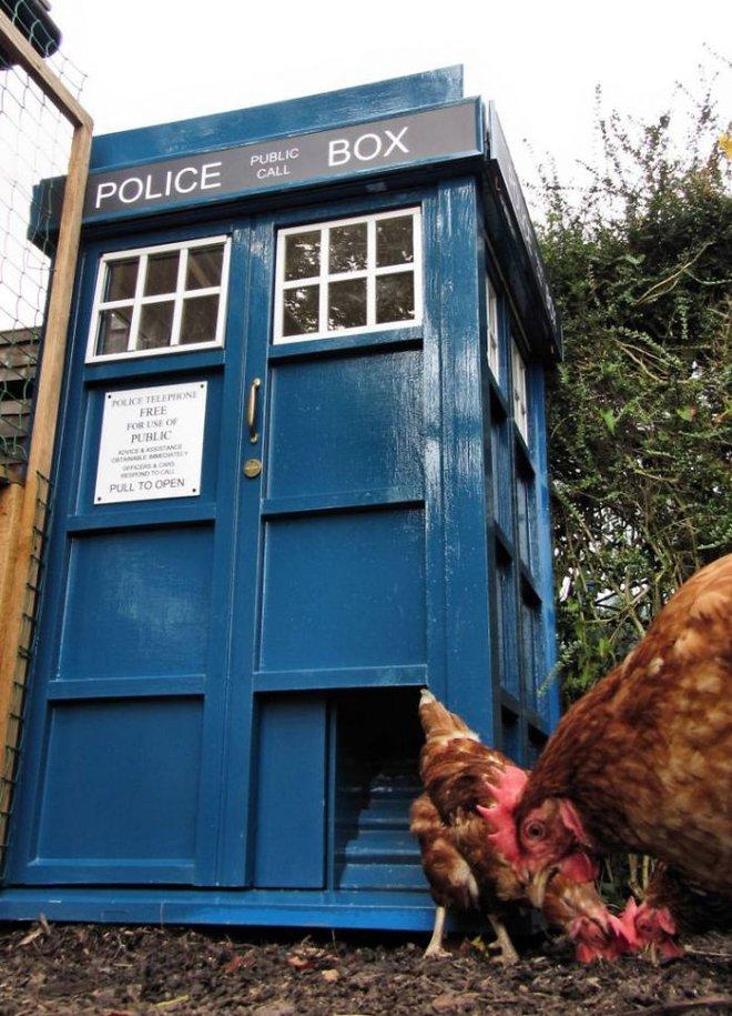 Hóa ra xây chuồng gà cũng có thể sáng tạo được tới mức này - Ảnh 9.