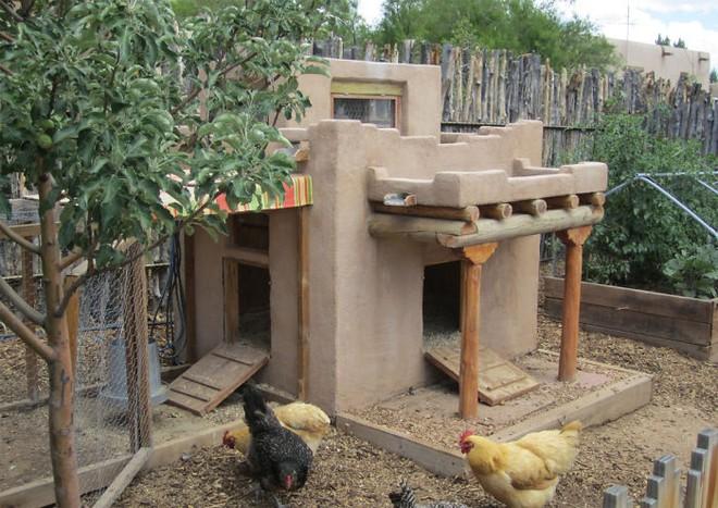 Hóa ra xây chuồng gà cũng có thể sáng tạo được tới mức này - Ảnh 11.