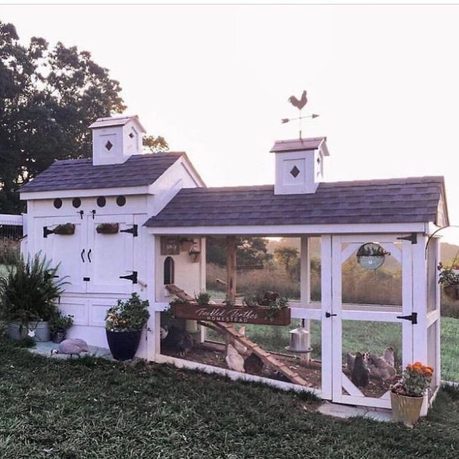 Hóa ra xây chuồng gà cũng có thể sáng tạo được tới mức này - Ảnh 12.