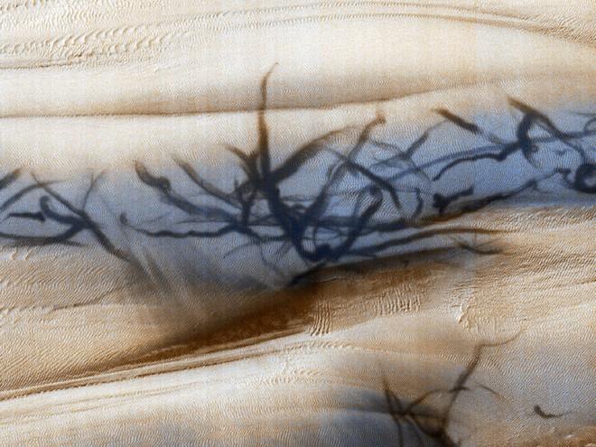 NASA phát hiện loạt vết đen khổng lồ đầy bí ẩn gây ra bởi quỷ bụi trên bề mặt Hỏa Tinh - Ảnh 1.