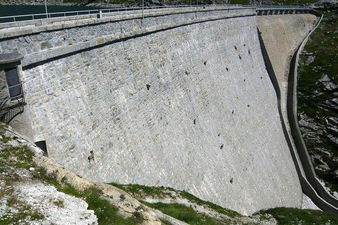 Alpine Ibex: Bất chấp các vấn đề về trọng lực, loài động vật này vẫn có thể leo lên các bức tường thẳng đứng - Ảnh 3.