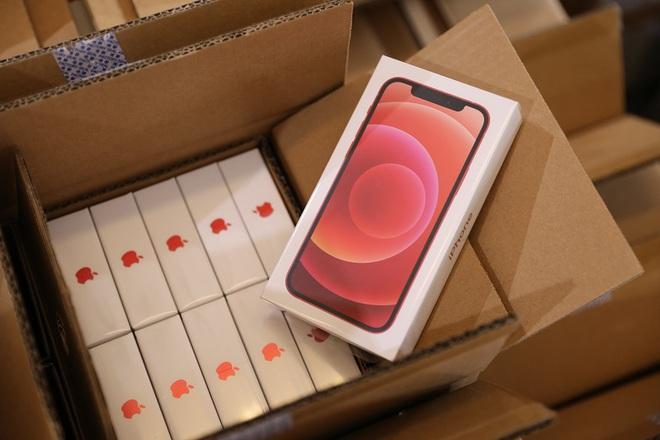 Thị trường iPhone 12 chính hãng: iPhone 12 thừa mứa, iPhone 12 Pro Max khan hàng, Gold là màu được săn lùng nhất - Ảnh 3.