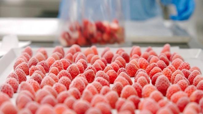 Ngành công nghiệp thực phẩm Nhật Bản thích ứng với đại dịch nhờ kỹ thuật đông lạnh công nghệ cao - Ảnh 1.