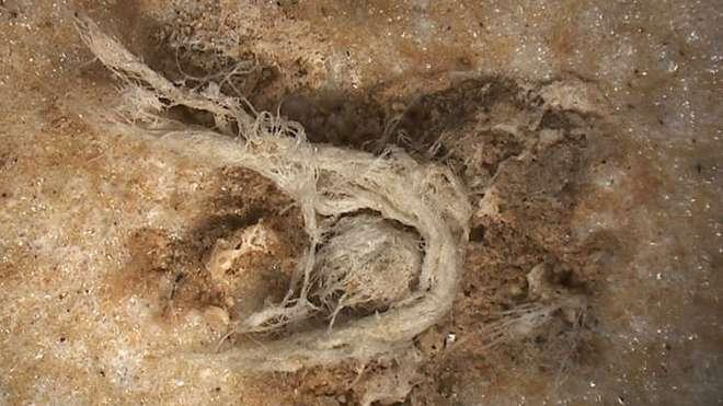 Điểm lại những khám phá khảo cổ học ấn tượng nhất năm 2020 - Ảnh 8.