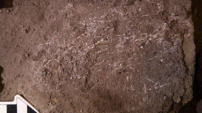 Điểm lại những khám phá khảo cổ học ấn tượng nhất năm 2020 - Ảnh 9.