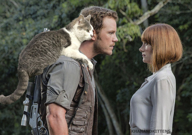 Chết cười với chùm ảnh Công viên kỷ Jura nhưng khủng long được thay thế bằng mèo và chồn - Ảnh 12.