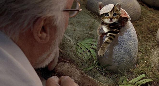 Chết cười với chùm ảnh Công viên kỷ Jura nhưng khủng long được thay thế bằng mèo và chồn - Ảnh 3.
