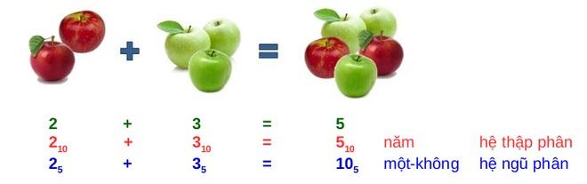 """Hiểu được những cách đếm số khác thường này, ta mới biết tại sao giáo sư Hồ Ngọc Đại lại nói """"hai cộng ba bằng mười"""" - Ảnh 9."""
