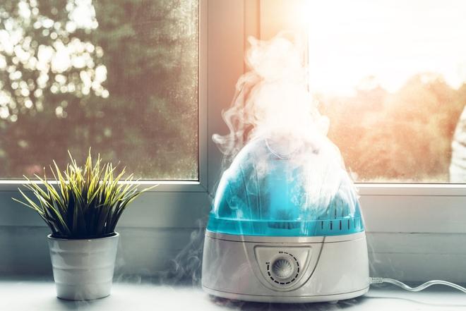 Muốn hệ miễn dịch khoẻ mạnh và phòng ngừa COVID-19, chuyên gia khuyến cáo nên để độ ẩm trong nhà từ 40-60% - Ảnh 1.