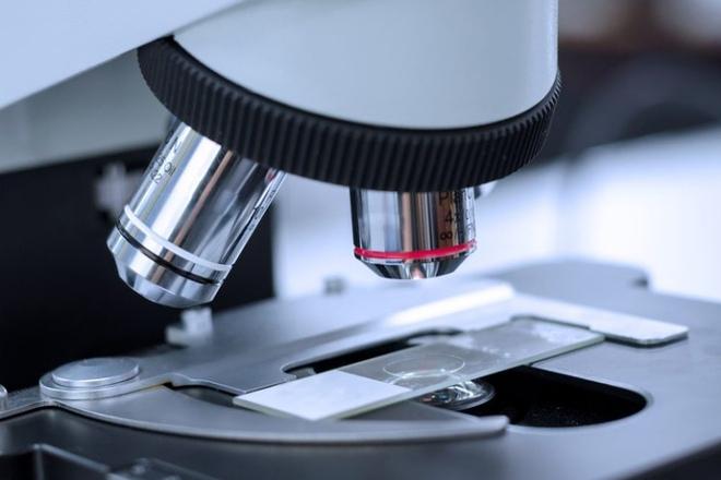 Các kính hiển vi hiện tại khó có thể 'nhìn thấu' vào bên trong cơ thể người để quan sát các mô sống (ảnh minh họa)