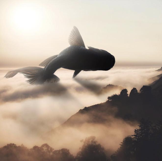 Câu chuyện của nhiếp ảnh gia phía sau bức ảnh ảo diệu được chọn làm màn hình chờ của Photoshop 2021 - Ảnh 10.