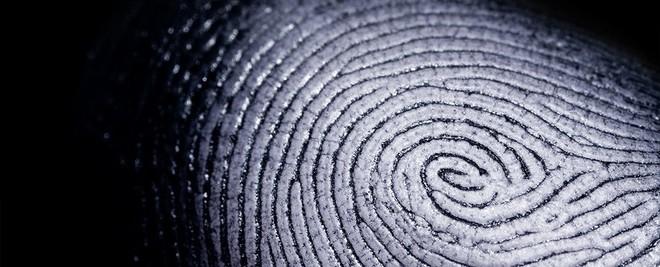 Mồ hôi dấu vân tay dính trên điện thoại của bạn hóa ra là một tính toán tuyệt vời của tạo hóa - Ảnh 1.