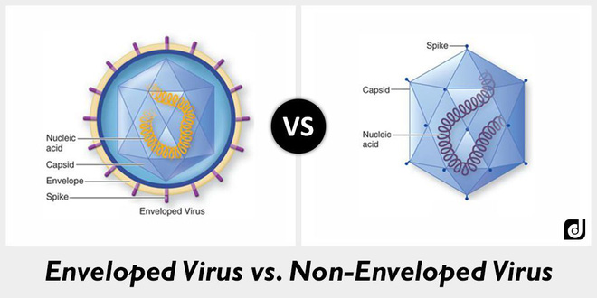 Cồn diệt virus corona như thế nào: Cách chọn nước rửa tay khô an toàn và hiệu quả nhất trong dịch Covid-19 - Ảnh 4.